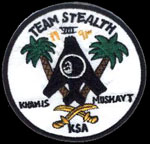 [Team Stealth VIII patch.()]